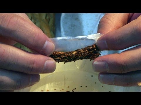 Emergency Rolling Paper Marijuana Tips & Tricks with Bogart #21