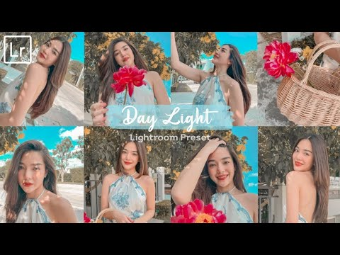 How-to-edit-Day-Light-Preset-•