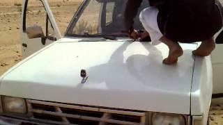 فيديو لشبان في مقناص يخرج عليهم داب من السيارة
