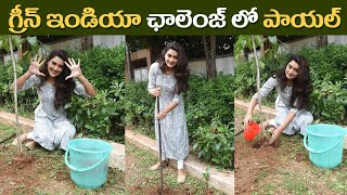 RX100 Heroine Payal Rajput Accepts Green India Challenge | గ్రీన్ ఇండియా ఛాలెంజ్ లో పాయల్ రాజ్ పుత్ - IGTELUGU