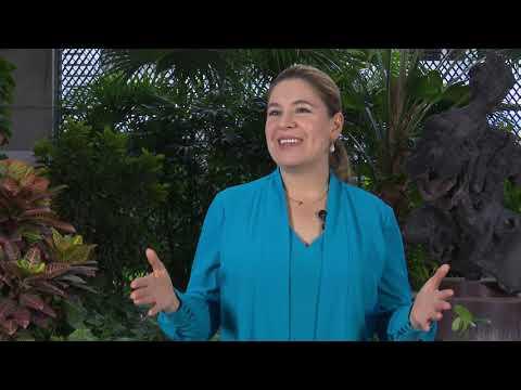 Costa Rica Noticias Regional - Miércoles 28 Julio 2021