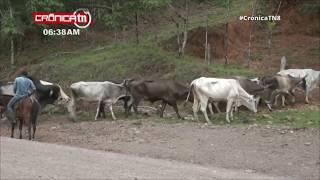 Gobierno Sandinista inaugura revestimiento de caminos en Paiwas - Nicaragua