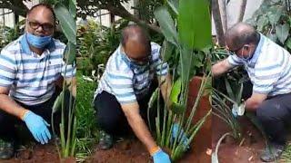Director VN Aditya Accepts Green India Challenge   TFPC - TFPC
