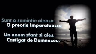 Semintie Aleasa - Ruben Birle