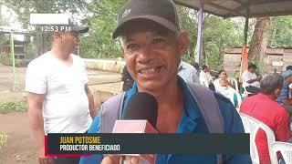Programa de semilla de arroz beneficiará a 62 productores de Carazo y Chinandega - Nicaragua