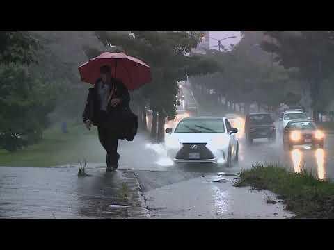 Este domingo se dieron 66 incidentes por las lluvias