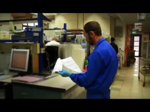סילוק שפך חומר במעבדה