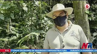 Parque Nacional Volcán Irazú sin riesgo para visitantes