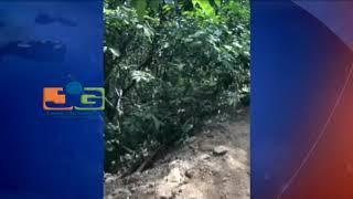 #SeSalvaronEnTablita - Se vuelca vehículo al borde de barranco en Las Piedras,San José de las Matas