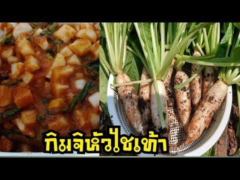 กิมจิหัวไชเท้าสดๆจากแปลงผัก-by