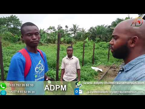 Comment réussir au Cameroun : Business pisciculture : part 3