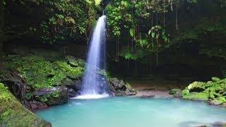 Dominica Travel