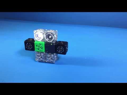 Cubelets Robot: Dizz-e