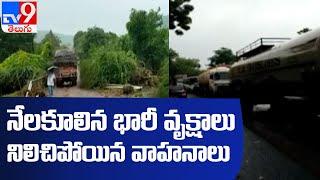 Telangana, Maharashtra రాకపోకలకు అంతరాయం - TV9 - TV9