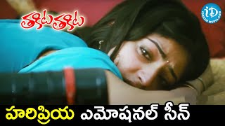 Haripriya Emotional Scene | Thakita Thakita Movie Scenes | Harshvardhan Rane | Nagarjuna | Bhumika - IDREAMMOVIES