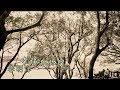 李明洋–幸福為你留 (官方完整版MV)HD