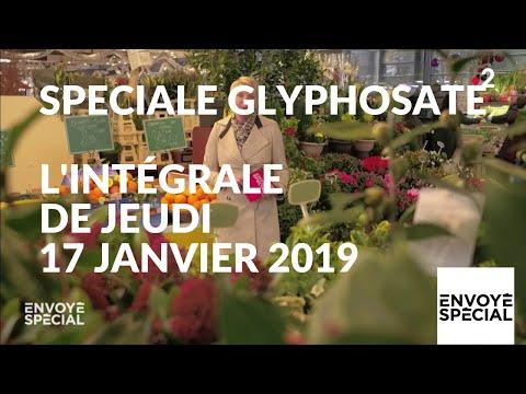 nouvel ordre mondial | Envoyé spécial. Glyphosate : comment s'en sortir ? - 17 janvier 2019 (France 2)
