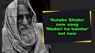 'Gulabo Sitabo' new song 'Madari ka bandar' out now - IANSINDIA