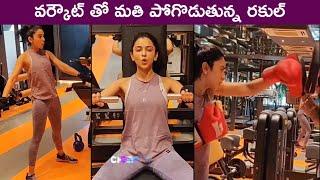 Rakul Preet Singh Latest Heavy Gym Workout Session   Rakul Fitness Goals   Rajshri Telugu - RAJSHRITELUGU