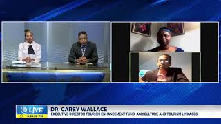 What Is The Role Of The Diaspora In Jamaica's Food Security | Panel Discussion | CVMTV