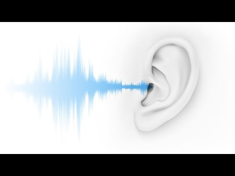 4 Steps That Help Protect Your Workers' Hearing