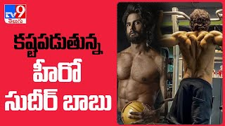 జిమ్లో కష్టపడుతున్న హీరో సుదీర్ బాబు : Hero Sudheer Babu Gym Workout Video - TV9 - TV9