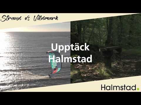 Strand VS Vildmark