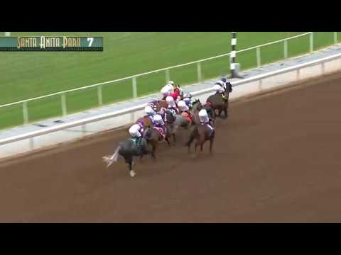 Dream of Summer Stakes (Cal-breds) - March 26, 2017