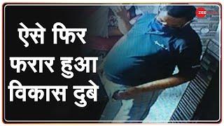 Zee Investigation Exclusive : हिस्ट्रीशीटर Vikas Dubey से जुड़ा हर सच ZEE NEWS पर | Kanpur Encounter - ZEENEWS