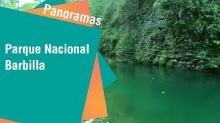 Fauna y flora costarricense en el Parque Nacional Barbilla | Panoramas