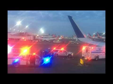 FBI Agents Storm JetBlue Plane at JFK After Hijacking 'False Alarm'