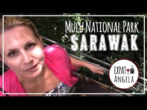 Exploring Bats, Caves & Skywalks at Mulu National Park | Malaysia Expat Life, Sarawak Borneo