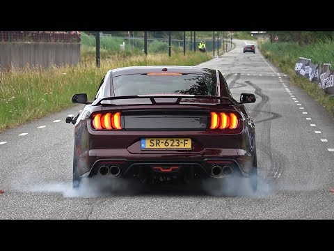 Ford Mustang 5.0 V8 Royal Crimson GT Performance – BURNOUT & SOUND!