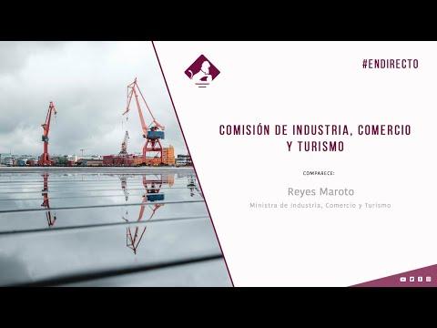 Comisión de Industria, Comercio y Turismo (10/12/2020)