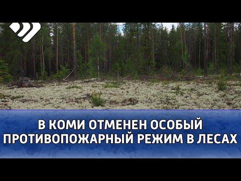 В Коми отменен особый противопожарный режим в лесах