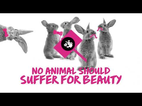 Cruelty-Free Skincare and Cosmetics - Find Out How We Test Beauty Products