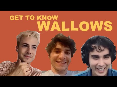 Get to know WALLOWS