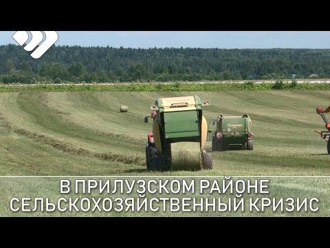 В Прилузском районе назревает сельскохозяйственный кризис