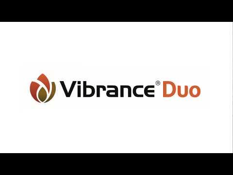 #RÖTTERNA - Introduktion till Vibrance Duo