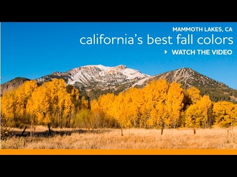 Top Fall Hikes by John Wentworth of Mammoth Lakes Trails System