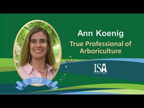 2019 True Professionals | Ann Koenig