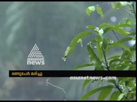 Heavy rain hits normal life and destroys crops in Thodupuzha