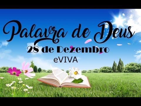 PALAVRA DE DEUS PARA HOJE 28 DE DEZEMBRO eVIVA MENSAGEM MOTIVACIONAL PARA REFLEXÃO DE VIDA