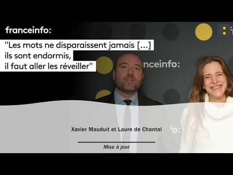 connectYoutube - Xavier Mauduit :