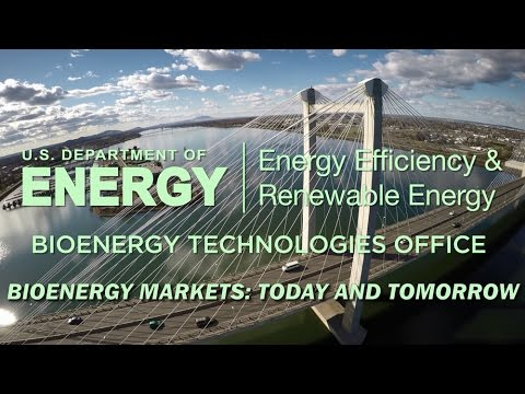 Bioenergy Markets: Today and Tomorrow
