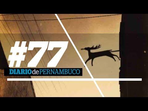 Programa 77: no Beco do Veado