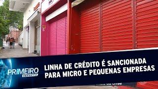 Lei que cria linha de crédito para micro e pequenas empresas  | Primeiro Impacto (19/05/20)