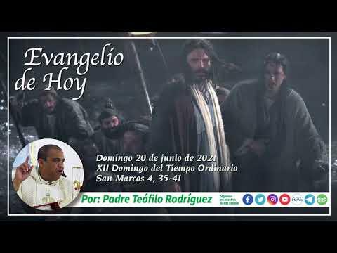Reflexion del Evangelio de Hoy - Domingo 20 de junio de 2021