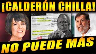 ¡DE RODILLAS CALDERÓN PIDE AL PUEBLO Y FANS DE AMLO PAREN! DICE QUE NO SABEN PERDER, NOROÑA RESPONDE