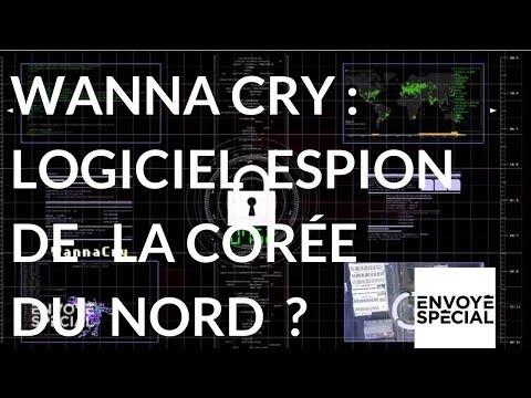 nouvel ordre mondial | Envoyé Spécial. WannCry un rançon-logiciel de la Corée du Nord ? - 14 décembre 2017 (France 2)